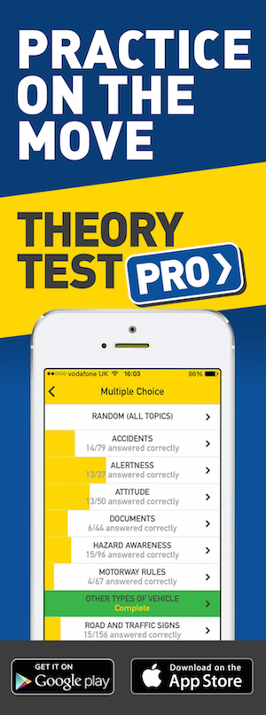 Free Theory Test Pro for L Factory students!
